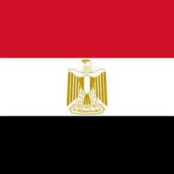 أفضل دكتور عظام فى مصر